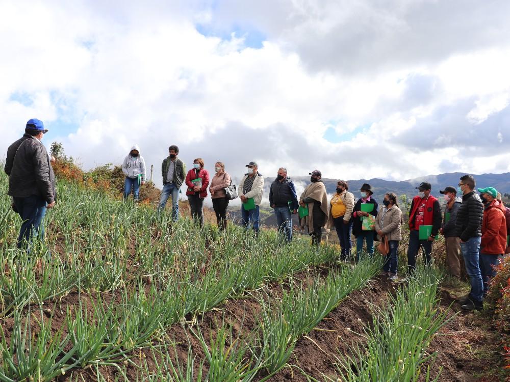 Finalizó exitosamente el proyecto de reconversión tecnológica del cultivo de cebolla larga en la cuenca del lago de tota