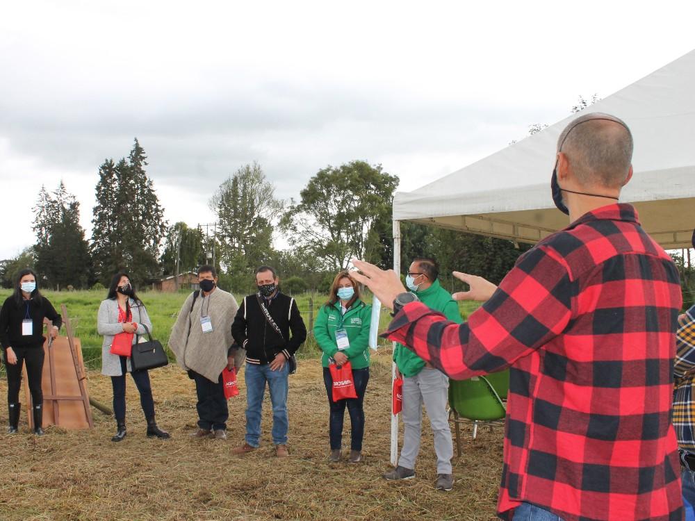 AGROSAVIA llevó a cabo día de campo sobre producción de forraje en sistemas de alimentación ganadera