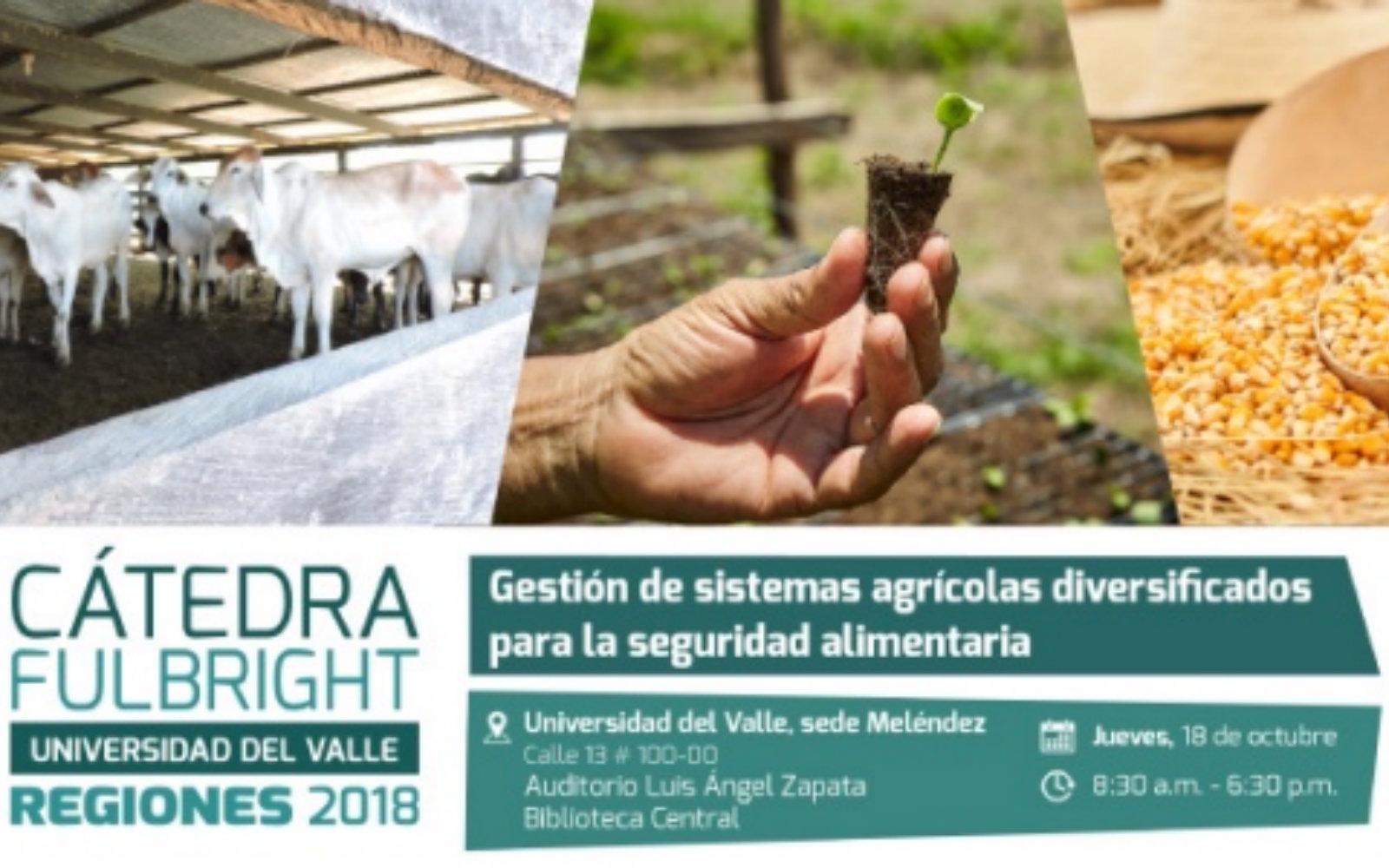 Explorando los desafíos y las oportunidades para una agricultura sostenible