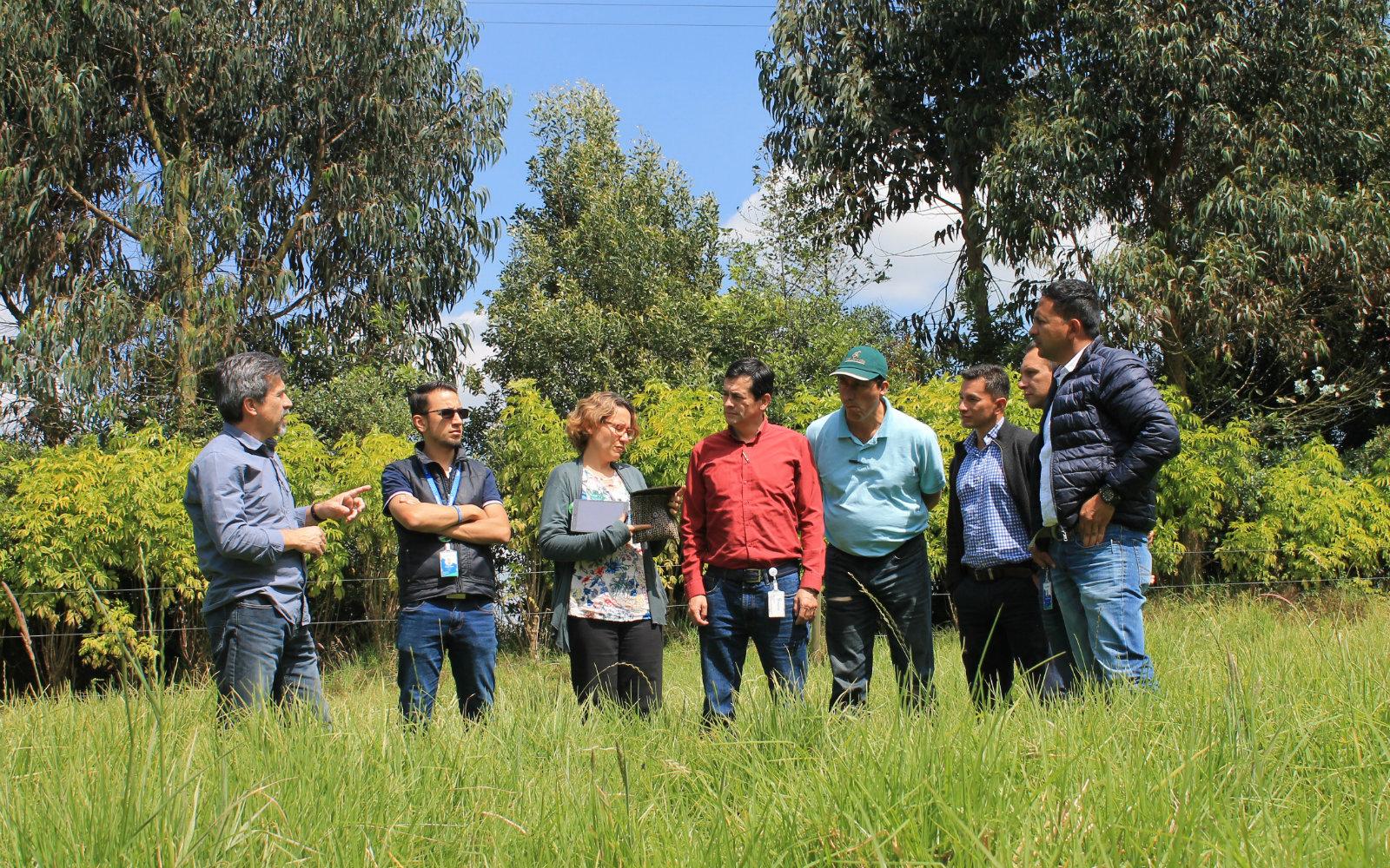 Nuevo horizonte para el desarrollo agrosilvopastoril en Colombia