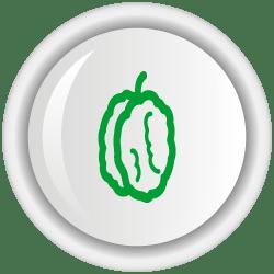 Opciones tecnológicas para el manejo del perforador de la semilla de cacao, Carmenta foraseminis