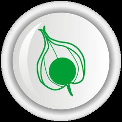 Recomendaciones de uso de biofertilizantes en uchuva a nivel de vivero y campo