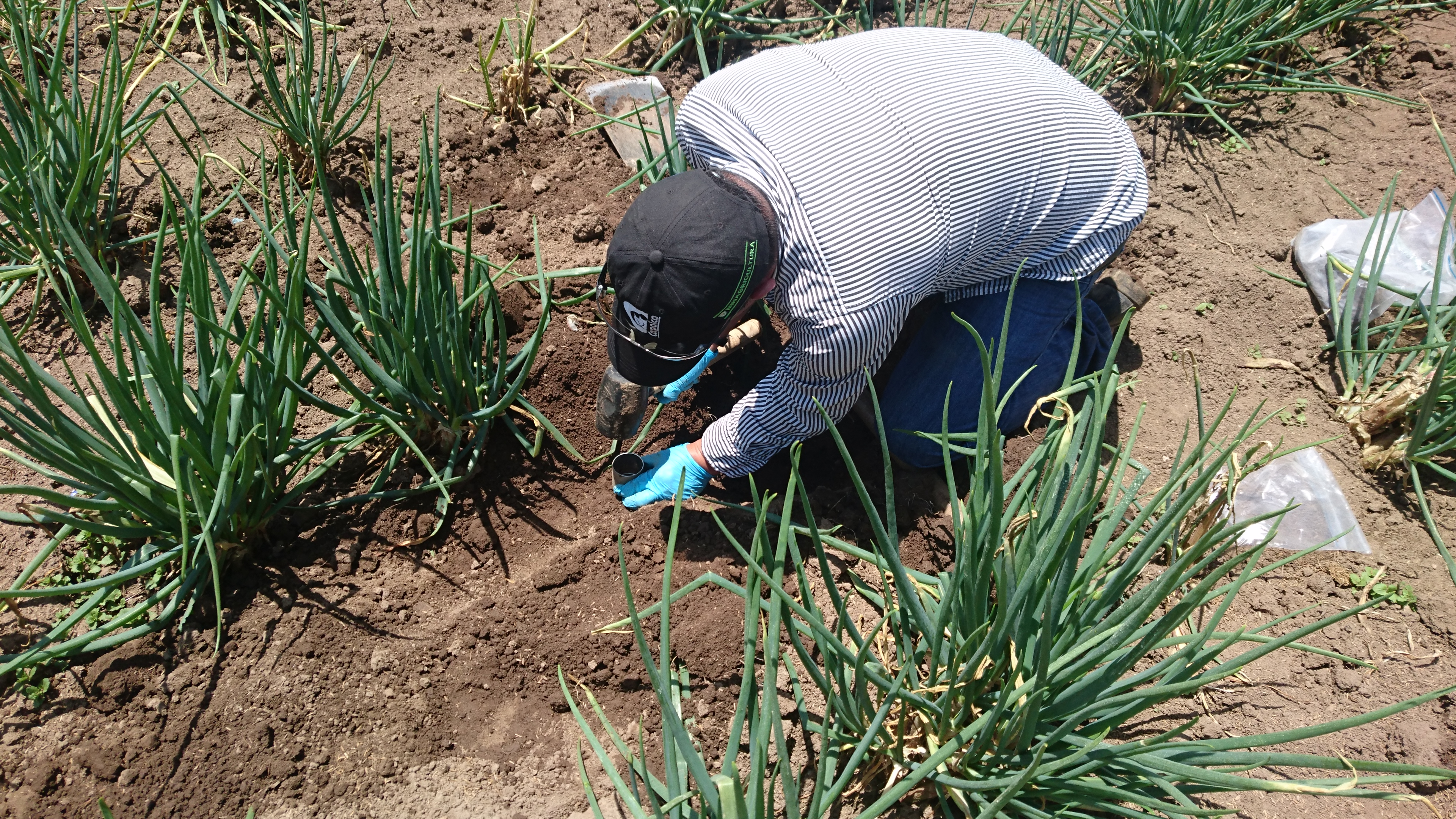 110 municipios del altiplano cundiboyacense pueden acceder a información espacial de suelos de manera gratuita