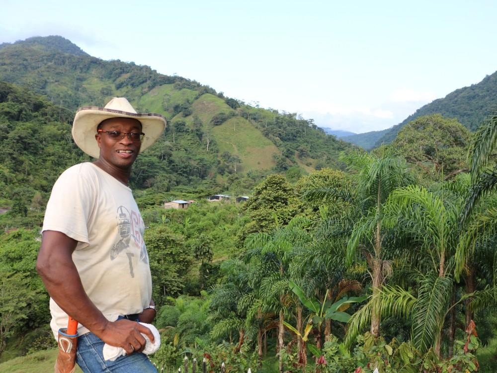 AGROSAVIA presentará avances en investigación en sistemas de producción de cítricos, aguacate, cacao y chontaduro para zonas productoras del país