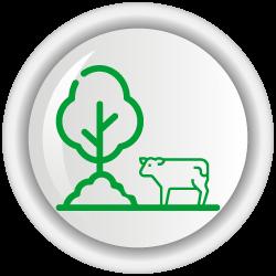 Sistema de apoyo a la toma de decisiones (SATD) en bienestar de bovinos lecheros.