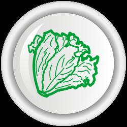 Bioplaguicida Tricotec W.P para el control de patógenos en los cultivos de tomate, lechuga y arroz