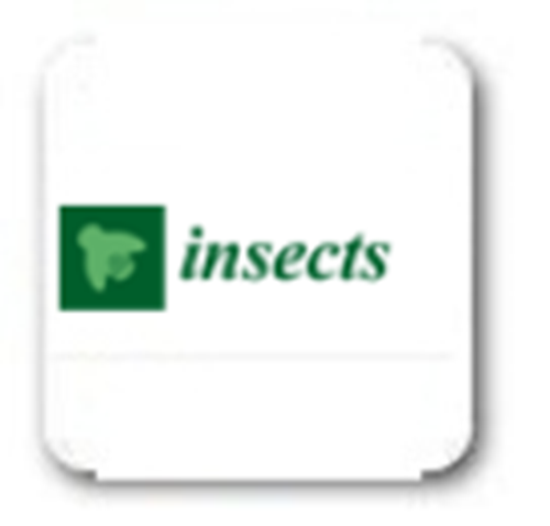 Insects (2010 – 2018)