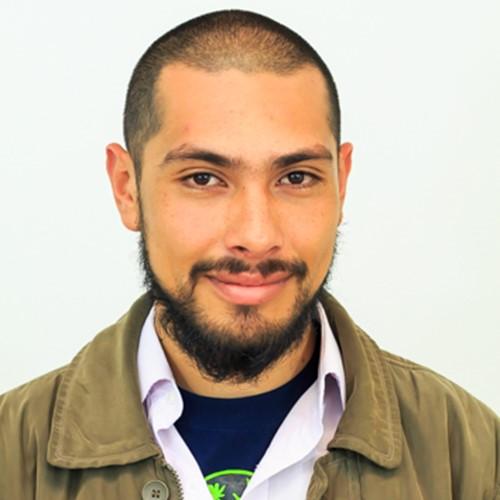 Julián David Fernández Ascarate