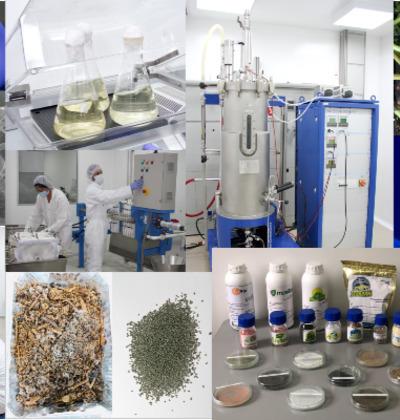 Bioproductos y Bioprocesos Agropecuarios