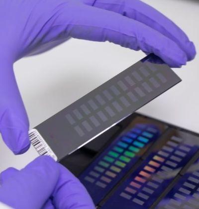 Recursos Genéticos y Biotecnología Animal