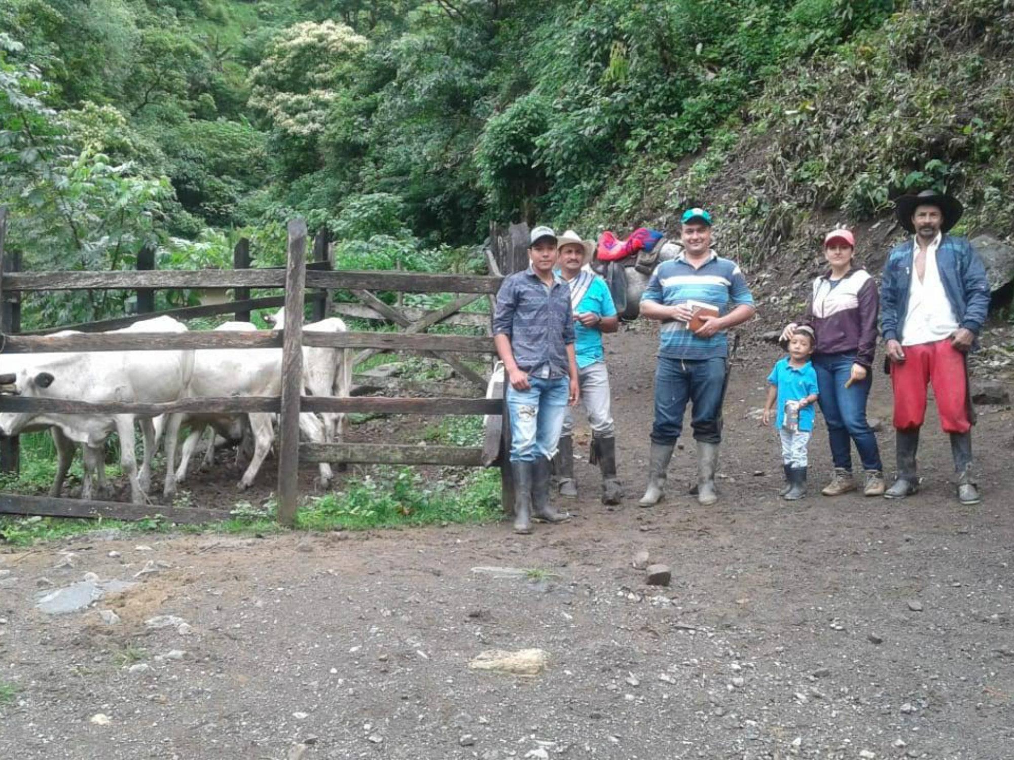 Productores de Ituango, felices con el ganado BON