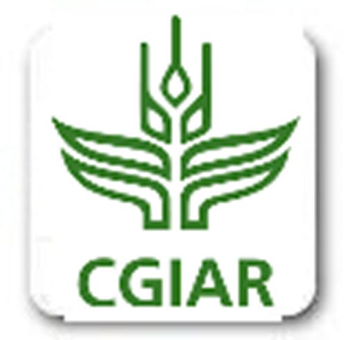 Grupo Consultivo para la Investigación Agrícola Internacional