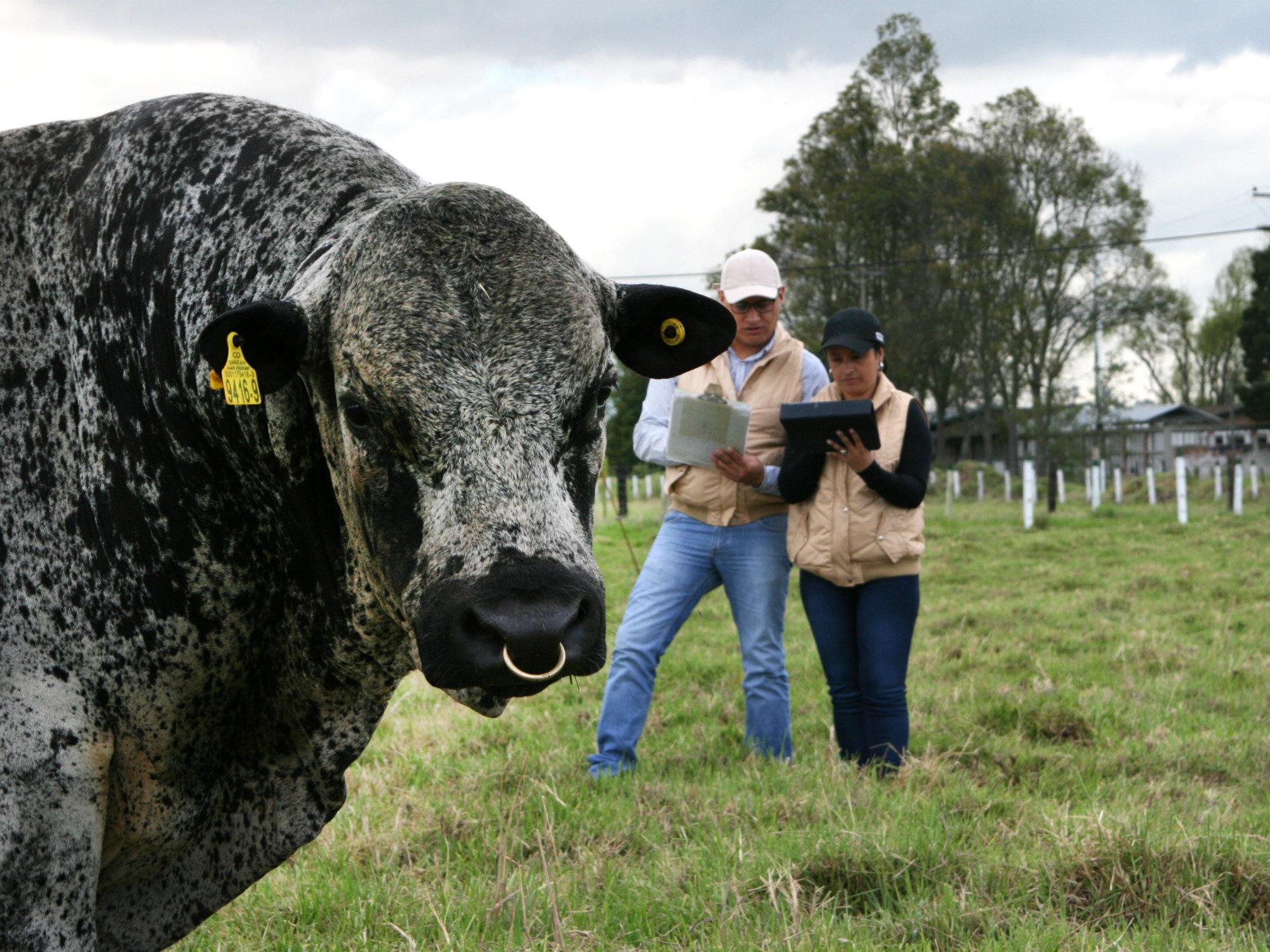 Oferta de formación complementaria para los Extensionistas Agropecuarios