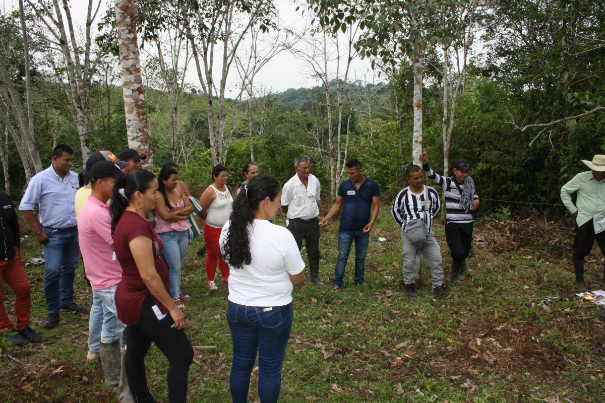 AGROSAVIA realiza taller sobre el manejo sostenible de suelos en Caquetá