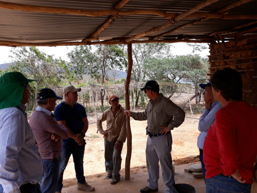 AGROSAVIA participó en jornada enfocada en cultivo de Marañón en Norte de Santander