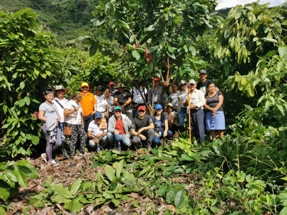 Así avanzamos en el fortalecimiento del nodo de innovación en cacao en el TISERE Policarpa