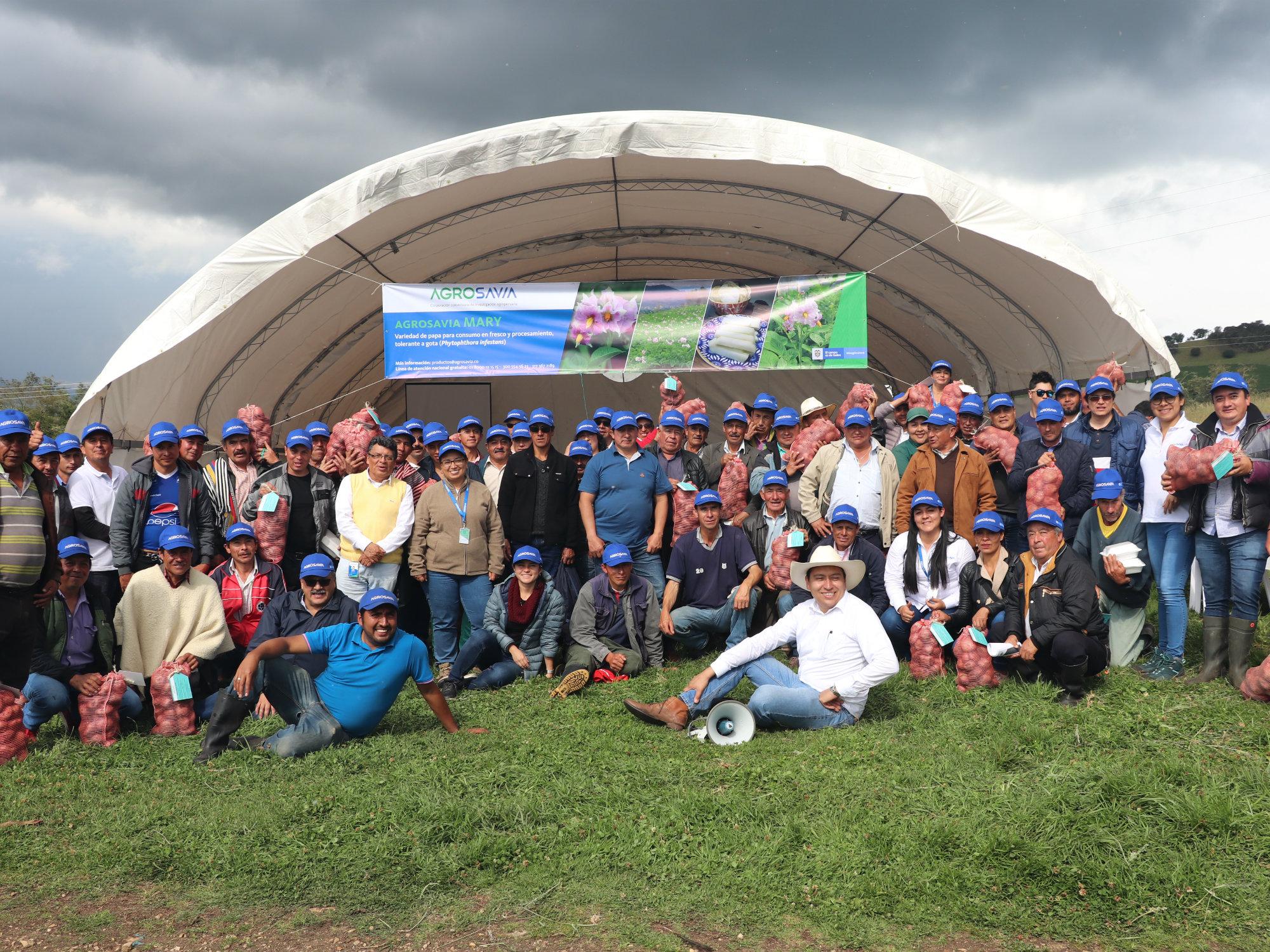 Se lanzó la variedad de papa AGROSAVIA Mary ante productores de Cundinamarca y Boyacá