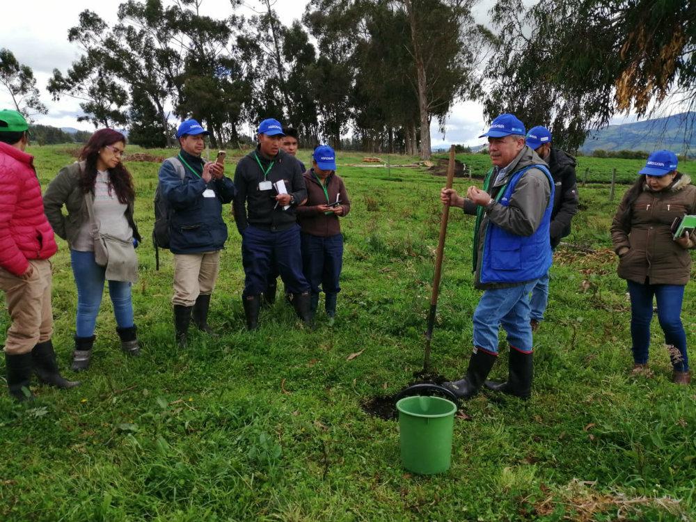 Agrosavia Mary, la nueva alternativa para el papicultor nariñense