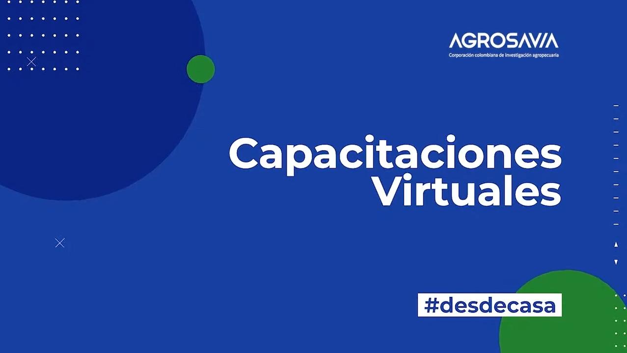 AGROSAVIA transforma sus capacitaciones y las lleva hacia la virtualidad durante este tiempo