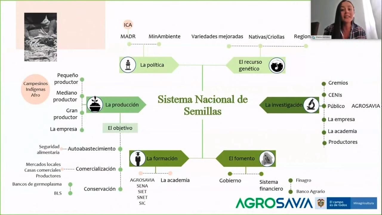 AGROSAVIA lanza Plan Nacional de Semillas